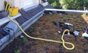 recherche fuite toiture terrasse
